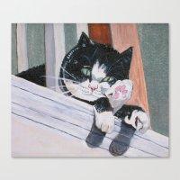 Daisy the Cat Canvas Print