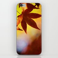 Autumn Kaleidoscope iPhone & iPod Skin