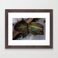 Moody Leaf Framed Art Print
