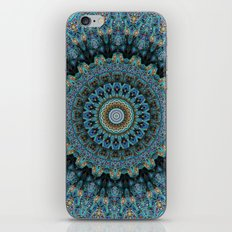 Spiral Eye iPhone & iPod Skin