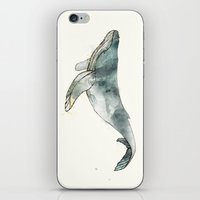 Humpback Whale iPhone & iPod Skin
