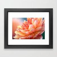 Dahlia Glow Macro Framed Art Print