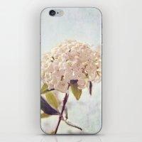 Summer Love iPhone & iPod Skin