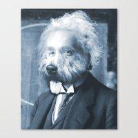 Albie Einstein Canvas Print