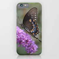 ✿ Butterfly εїз  iPhone 6 Slim Case