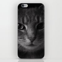 Le Chat  iPhone & iPod Skin