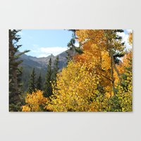 Autumn in the Rocky Mountains at Diamond Lake Trail, Eldora Colorado Canvas Print