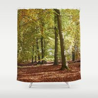 Autumnal Beech Trees In … Shower Curtain
