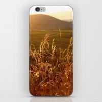 Gold Warm Light - JUSTART © iPhone & iPod Skin
