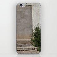 Door iPhone & iPod Skin