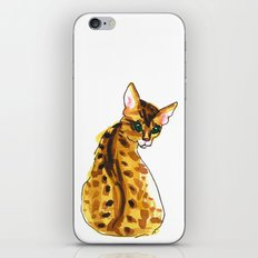 bengal kitten iPhone & iPod Skin