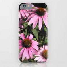 Coneflowers iPhone 6 Slim Case