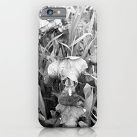 Colorless iPhone 6 Slim Case