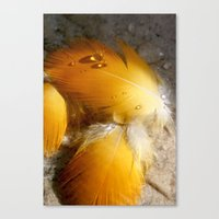 Yellow Feathers Canvas Print