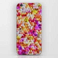 Pebble Rocks iPhone & iPod Skin