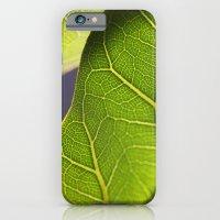 Sunny iPhone 6 Slim Case
