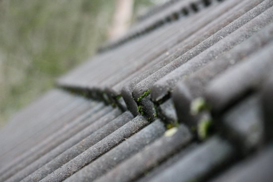 Sharp/depth photography of a row of roof tiles, The grey blue colours with the green moss Art Print