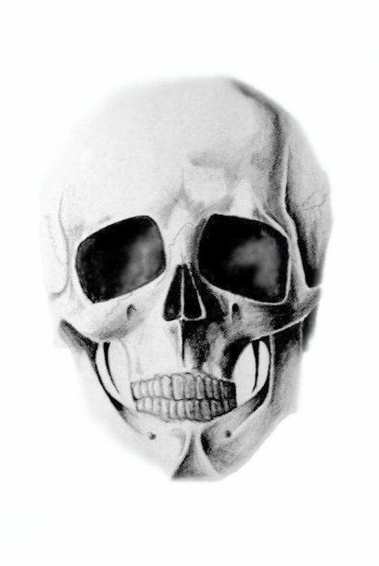 le crâne Canvas Print