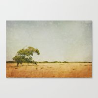 Summer Haze Canvas Print