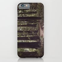 Redwood Forest iPhone 6 Slim Case
