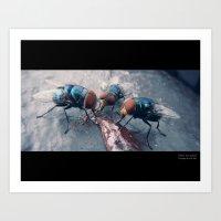 Flies on Frosting Art Print
