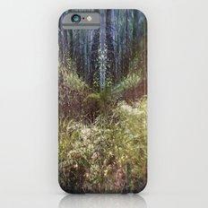 Forest Mandala iPhone 6s Slim Case
