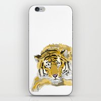 Sleepy Tiger iPhone & iPod Skin