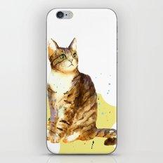 Cute Tabby Cat iPhone & iPod Skin