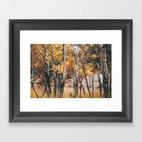 Near The Campground .  Framed Art Print