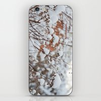 Bush In The Snow iPhone & iPod Skin