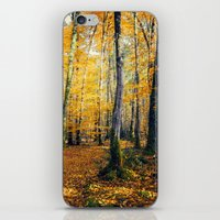 Yellow Trees iPhone & iPod Skin