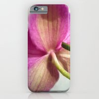 ORCHID iPhone 6 Slim Case
