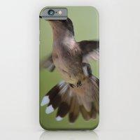 Hummingbird in Flight iPhone 6 Slim Case