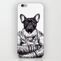 Astro Frog iPhone & iPod Skin