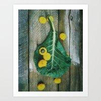 Collard Greens Art Print