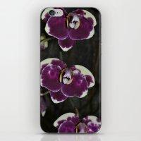 Purple Orchids iPhone & iPod Skin