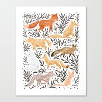 Foxes Field Guide Canvas Print