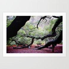 Angel Oak 1 Art Print