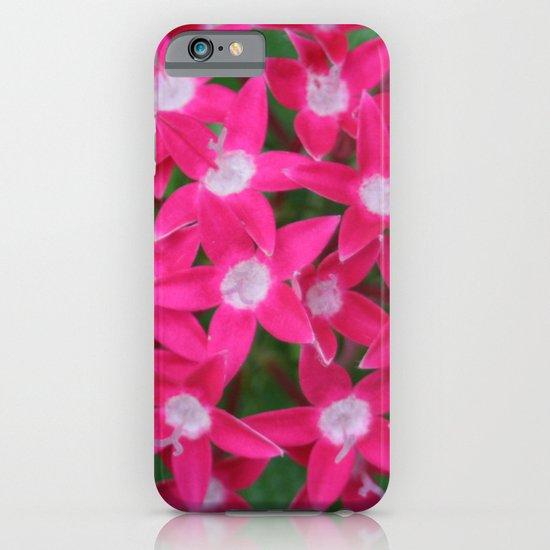 Pink Ixora iPhone & iPod Case