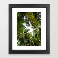 Maldivian Palm Framed Art Print