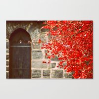 A Streak Of Red, Maple T… Canvas Print