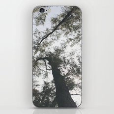 Above iPhone & iPod Skin
