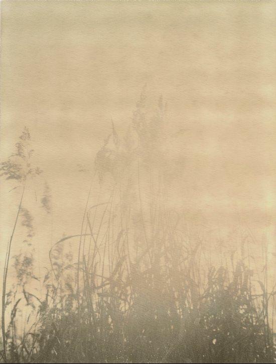 Sunbury Field Polaroid Art Print