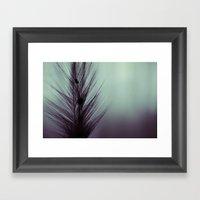 Feather's beauty. Framed Art Print