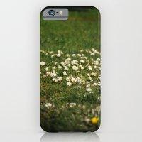 Dasies iPhone 6 Slim Case