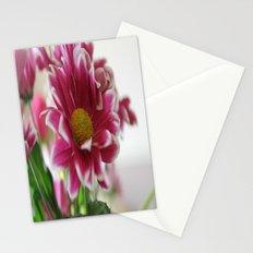A Splash of Pink Stationery Cards