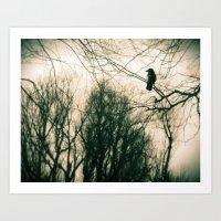 Crow Blur Art Print