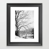 Bare Winter Framed Art Print