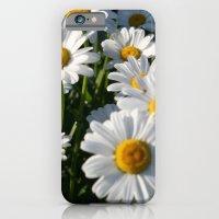 iPhone & iPod Case featuring Daisy Love by carol ann garner