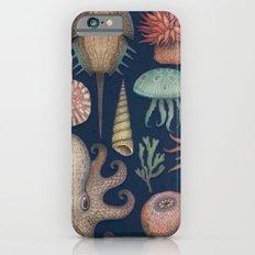 Aequoreus Vita iPhone 6 Slim Case